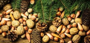 nuts and fruits in abuja, smoothies, christmas checklist